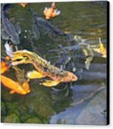 Queen Of The Pond Canvas Print