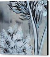 Queen's Lace 1 Canvas Print by Holly Donohoe