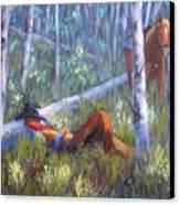 Quiet Siesta Canvas Print by Debra Mickelson