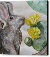 Rabbit With Flower Canvas Print