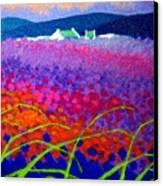 Rainbow Meadow Canvas Print by John  Nolan