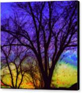 Rainbow Morning Canvas Print by Julie Lueders