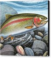 Rainbow Trout Stream Canvas Print by JQ Licensing
