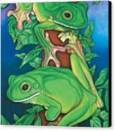 Rainforest Rendezvous Canvas Print