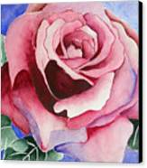 Ramblin' Rose Canvas Print
