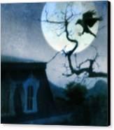 Raven Landing On Branch In Moonlight Canvas Print