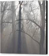 Rays Of Hope Canvas Print by Bill Cannon