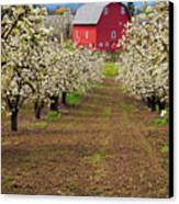 Red Barn Avenue Canvas Print by Mike  Dawson