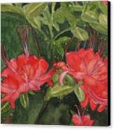 Red Blooms On The Parkway Canvas Print
