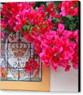 Red Bougainvilleas Canvas Print by Gaspar Avila