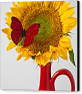 Red Butterfly On Sunflower On Red Pitcher Canvas Print by Garry Gay