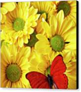 Red Butterfly On Yellow Mums Canvas Print by Garry Gay