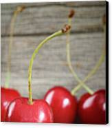 Red Cherries On Barn Wood Canvas Print by Sandra Cunningham