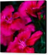 Red Floral Study Canvas Print by David Lane
