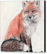 Red Fox In Snow Canvas Print by Marqueta Graham