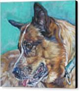 Red Heeler Australian Cattle Dog Canvas Print by Lee Ann Shepard