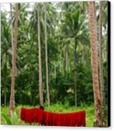 Red In The Jungle Canvas Print