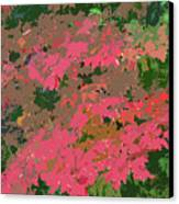 Red Leafs Work Number 12 Canvas Print