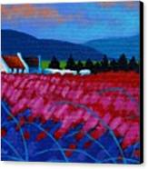 Red Meadow Canvas Print by John  Nolan