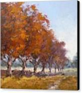 Red Oak Avenue Canvas Print by Yvonne Ankerman