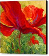 Red Poppy I Canvas Print by Marion Rose