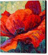 Red Poppy IIi Canvas Print by Marion Rose