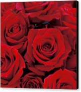 Red Rose Bouquet Canvas Print by Kathy Yates
