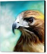 Red Tail Hawk  Canvas Print by Crispin  Delgado