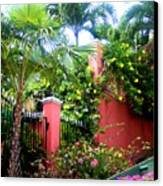 Red Wall And Palms Canvas Print