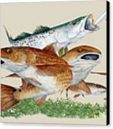 Reds And Trout Canvas Print by Kevin Brant