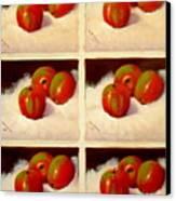 Redundant Apples Canvas Print