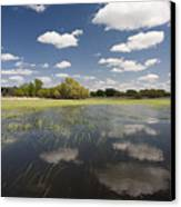 Reflecting Clouds - Jim River Valley Canvas Print by Patrick Ziegler