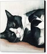 Relaxed Tuxedo Canvas Print