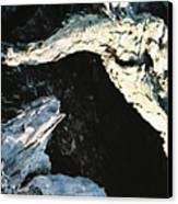 Reptilian Morphious Canvas Print