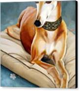 Rescued Greyhound Canvas Print by Sandra Chase