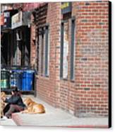 Resting On The Corner Canvas Print