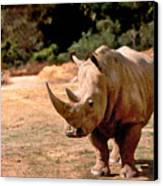 Rhino Canvas Print by Steve Karol