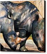 Rhinos In Dappled Shade. Canvas Print