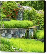 Rice Garden Canvas Print