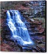Ricketts Glen Waterfall 3941  Canvas Print by David Dehner