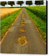 Road In Rural France Canvas Print