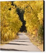 Road To Autumn Canvas Print