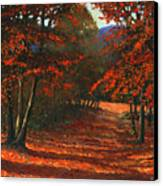 Road To The Clearing Canvas Print