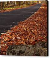 Roaring Fork Motor Trail In Autumn Canvas Print by Andrew Soundarajan