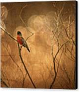 Robin Canvas Print by Lois Bryan