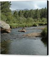 Rocky Mountain Stream Canvas Print