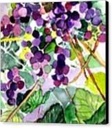 Roman Grapes Canvas Print