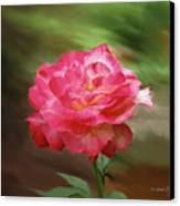 Rose Alone Canvas Print