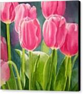Rosy Pink Tulips Canvas Print by Sharon Freeman