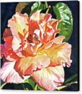 Royal Rose Canvas Print by David Lloyd Glover